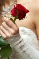 wedding flowers lists 2