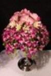 nelson wedding show 6