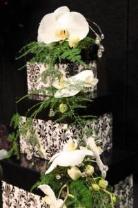 Grand 3 tiered cake.