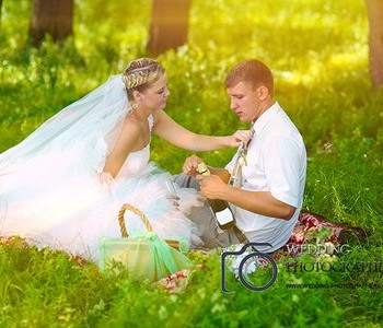 Wedding picnic in the park.