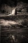 Wedding story 5