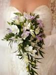 wedding directories 4