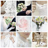 Weddings of New Zealand