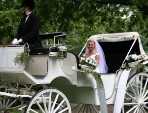 Bride arriving in horse drawn carriage.