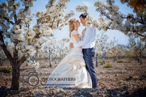 Wedding in the orchards.